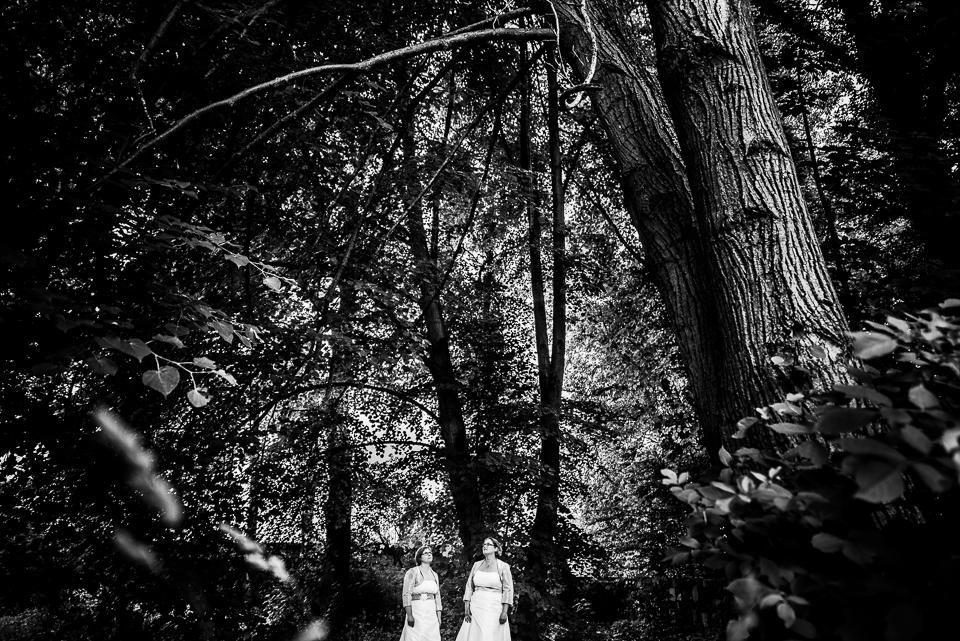 Hochzeitsfotograf-Frankfurt 20150620-172112-9545
