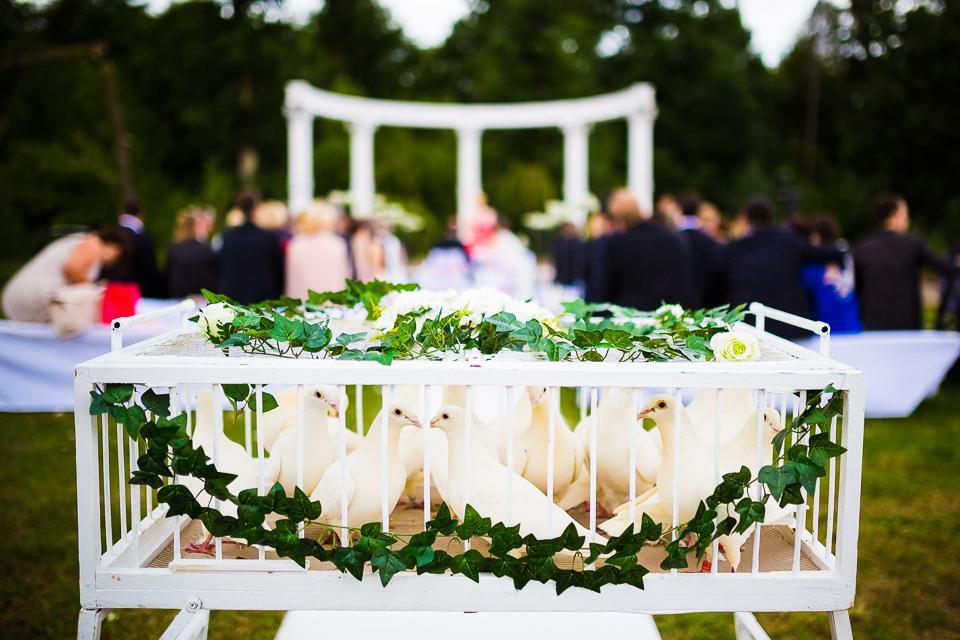 Hochzeitsfotograf-Frankfurt 20150725-152635-3164